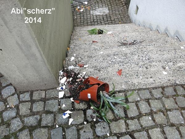 2014-06abischerz (10)